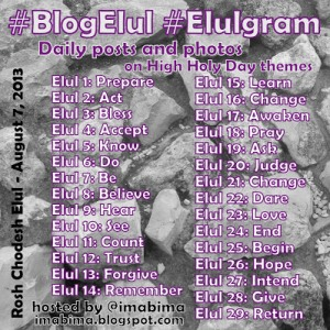 Blogging Elul